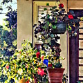 Flowers On Porch by Susan Savad