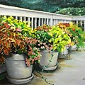 Flowers Pots On Deck by Ronald Dill