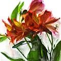 Flowers by Robert Rodda