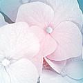 Flowers Seasonal by Karen  W Meyer