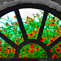 Flowers Through Basement Window At Monticello by Bill Cannon