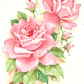 Roses by Laura Greco