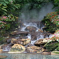 Flowery Falls At Disney by Lynn Jackson
