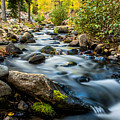 Flowing Creek by Maria Coulson