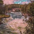 Flowing Free by John M Bailey