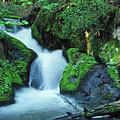 Flowing Softly by Bill Morgenstern