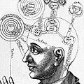 Fludds Mental Faculties, 1617 by Wellcome Images