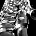 Flute Series II by Lauren Radke