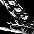 Flute Series IIi by Lauren Radke