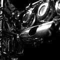 Flute Series Iv by Lauren Radke