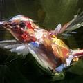 Flutter by Gary Bruton