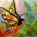 Flutterby - Watercolor by Donna Hanna