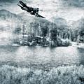 Fly Boy by Adam Vance