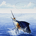 Fly Fishing For Sailfish by Charles Harden