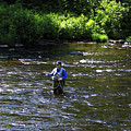 Fly Fishing In New York by Deborah Benoit