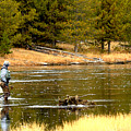 Fly Fishing On The Madison by Adam Jewell