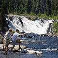 Fly Fishing The Lewis River by Marty Koch