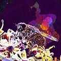 Fly Housefly Insect Close Macro  by PixBreak Art
