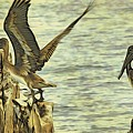 Flyaway Pelican by Alice Gipson