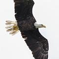 Flyby by Samuel Jokich