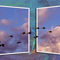 Flying Across by Roger Wedegis