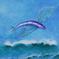 Flying Fish by Rf Hauver