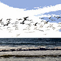 Flying Gulls by David Lee Thompson