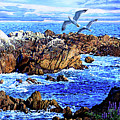 Flying High Over California by John Lautermilch