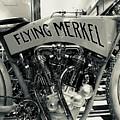Flying Merkel by FlyingFish Foto