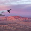Flying Over The Mojave Desert At Sunrise by Georgia Mizuleva