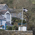 Flying The Flag For Cornwall by Terri Waters