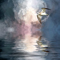 Flying Towards The Light by Cyndy Doty