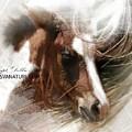 Foal Art 0337 by Captain Debbie Ritter