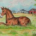 Foal In Grass by Jodi Bauter