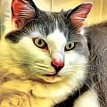 Focused Feline by Stephen Younts