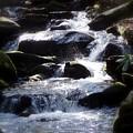 Fodder Creek by Jim Greer
