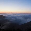 Fog At The Golden Gate by Blu Crane Arts