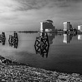 Fog In The Bay 1 Mono by Steve Purnell