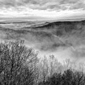 Fog In The Mountains - Pipestem State Park by Kerri Farley