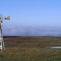 Windmill by Randy Bayne