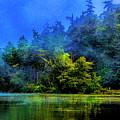Fog Lake by Rick Bragan