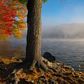 Fog Lifting by Karol Livote