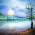 Fog Over The Lake by Debra and Dave Vanderlaan