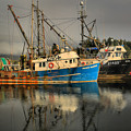 Fog Over Ucluelet Fishing Port by Adam Jewell