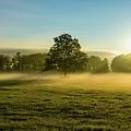 Foggy Autumn Morning On The Farm by Brandon Sprung