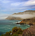 Foggy Day At Big Sur by Susan Rissi Tregoning