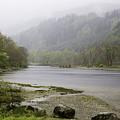 Foggy Day At Loch Lubnaig by Fran Gallogly