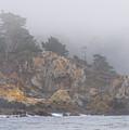 Foggy Day At Point Lobos by Derek Dean