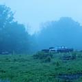 Foggy Days Gone By by Buddy Scott