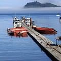 Foggy Dock by Marty Koch